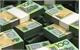 Tỷ giá ngoại tệ tham khảo ngày 19/5/2017