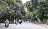 TP Bắc Giang: Đẹp những con đường hoa