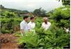 Khuyến khích thành lập tổ hợp tác, HTX và phát triển các sản phẩm chủ lực trên địa bàn huyện Lục Nam