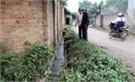 Nước thải gây ô nhiễm môi trường