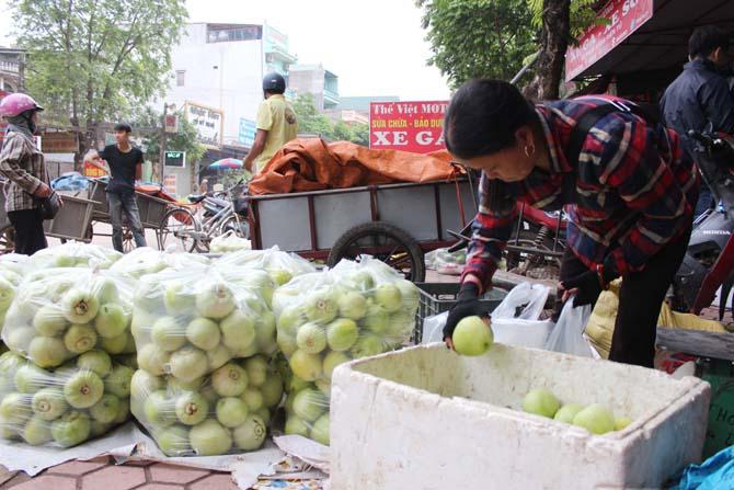 Dưa lê siêu ngọt Lục Nam - Sản lượng giảm, giá bán tăng