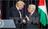 Tổng thống Palestine sẵn sàng nối lại đàm phán hòa bình với Israel