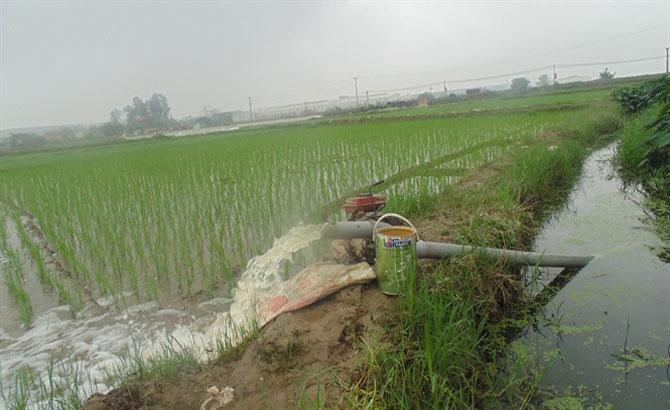 Xử lý triệt để các dự án có nguy cơ gây ô nhiễm