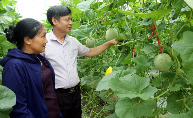 Bac Giang moves to ensure agricultural growth