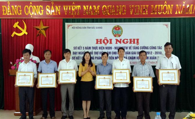Hội Nông dân tỉnh Bắc Giang: Đào tạo nghề, tạo việc làm mới cho hơn 35 nghìn hội viên