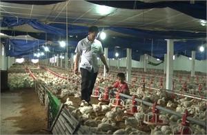 Khởi nghiệp bằng nông nghiệp công nghệ cao