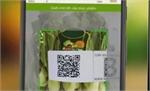 Công ty cổ phần BAGICO Bắc Giang: Hỗ trợ tem cho 100 nghìn tấn nông sản