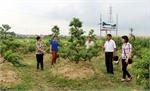 Nỗ lực bàn giao mặt bằng đường cao tốc Bắc Giang - Lạng Sơn