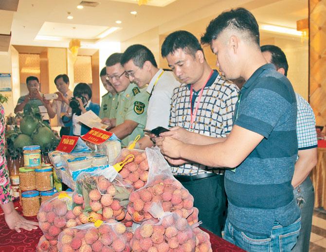 Nâng tầm, nông sản, Bắc Giang, xây dựng, sản phẩm chủ lực, quốc gia