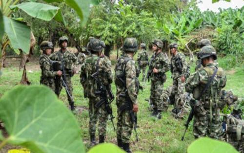 Hai nhà báo Hà Lan bị bắt cóc ở khu vực biên giới Colombia