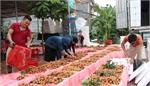 Ngành nông nghiệp có đơn vị chuyên trách thị trường