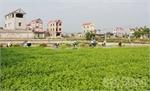 Bắc Giang có 52 xã thuộc diện đầu tư của Chương trình 135