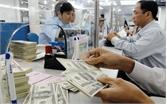 USD tiếp tục tăng, vàng lặng sóng