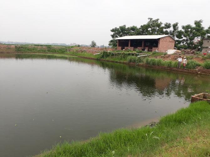 Biến đồng ruộng thành... ao hồ, nhà ở