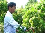 Cựu chiến binh Trần Ngọc Phú vượt lên thương tật làm giàu