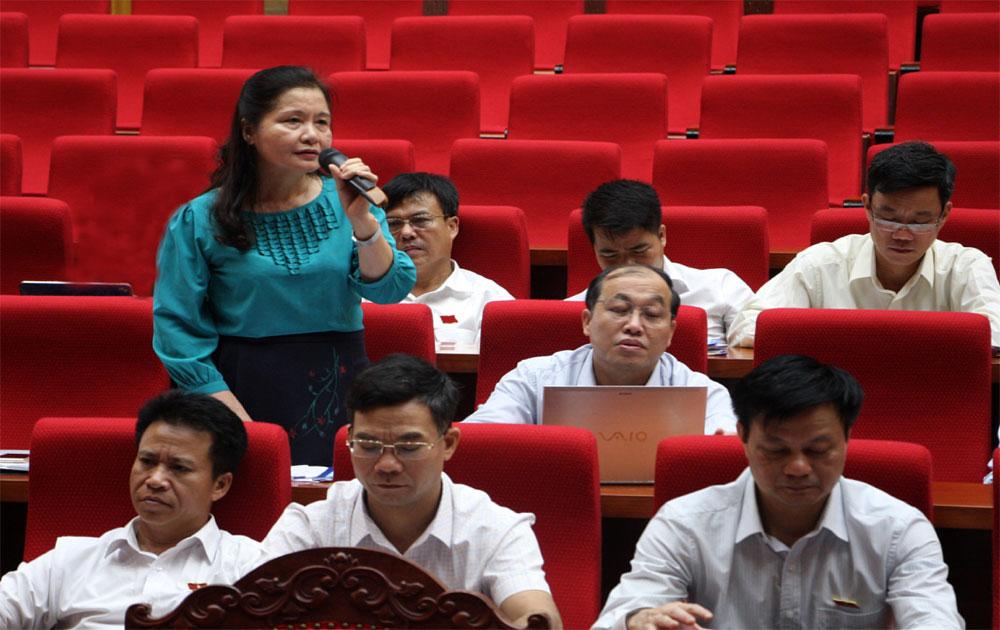 Kỳ họp thứ ba, HĐND tỉnh khóa XVIII: Đề xuất nhiều giải pháp tháo gỡ khó khăn trong sản xuất nông nghiệp, bảo vệ môi trường