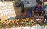 Vải Bắc Giang được giá nhất trong vòng 63 năm qua