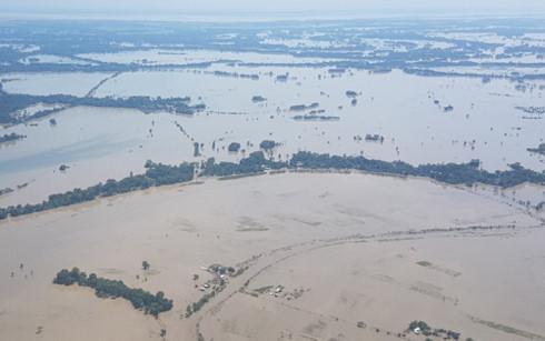 Lũ lụt ở Assam Ấn Độ: Hơn 1,75 triệu người bị ảnh hưởng, 52 người chết