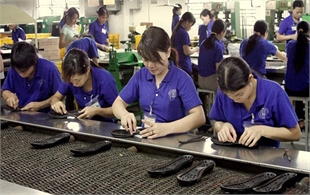 Brand development crucial for Vietnamese goods to enter EU market