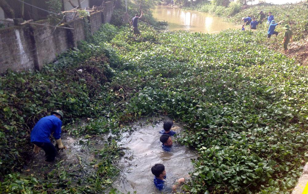 Thành đoàn Bắc Giang: Phát quang, khơi thông dòng chảy kênh tiêu T1
