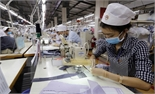 Số doanh nghiệp đăng ký thành lập mới tăng hơn 13% trong 7 tháng