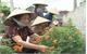 Đẩy mạnh tuyên truyền các điển hình tiên tiến học tập và làm theo tư tưởng, đạo đức, phong cách Hồ Chí Minh