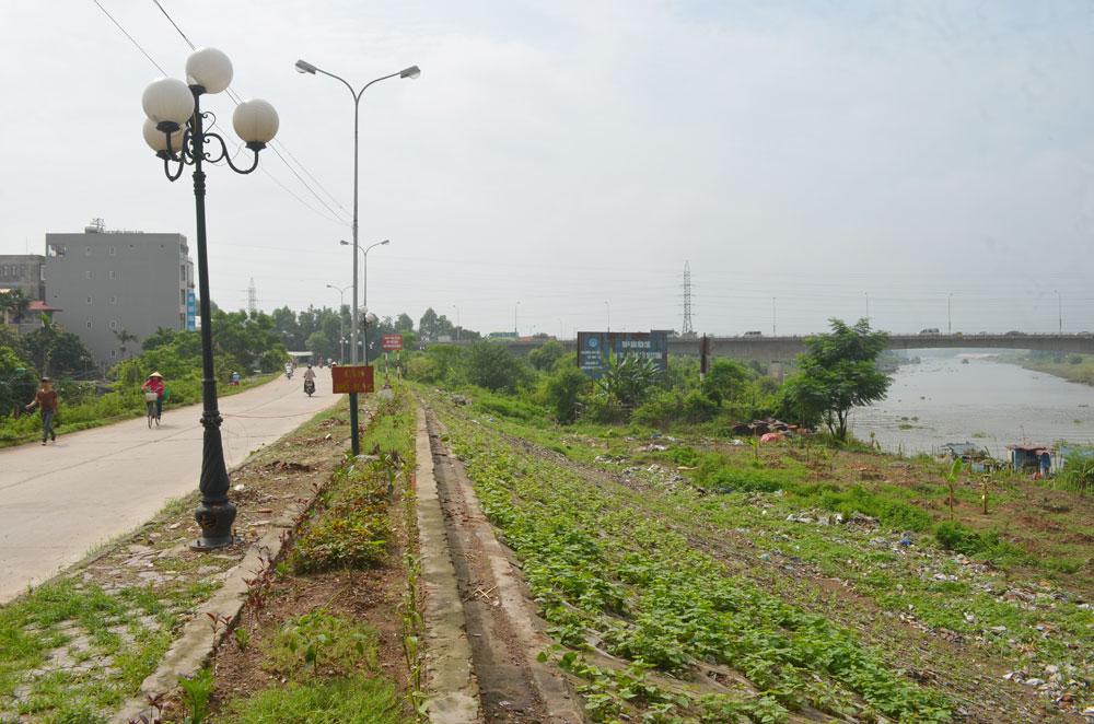 Đổ phế thải tùy tiện: Ô nhiễm môi trường, xấu cảnh quan