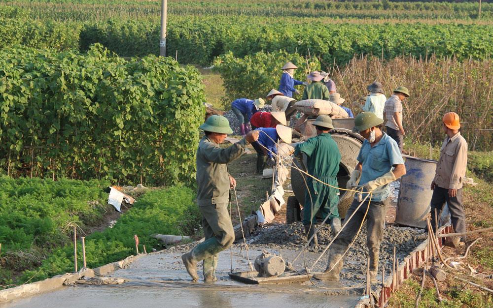 Lạng Giang: Kích cầu cứng hóa đường thôn
