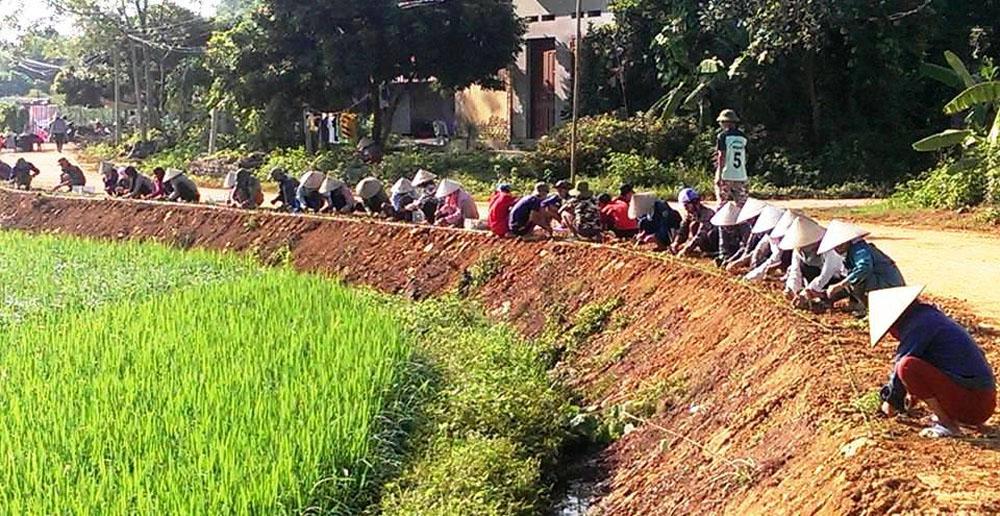 Yên Thế thí điểm trồng hoa trên đường nông thôn