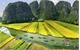 Vietnam tops Asian region in travel growth