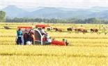 Đòi tiền bảo kê chủ máy gặt lúa, hai đối tượng bị công an bắt