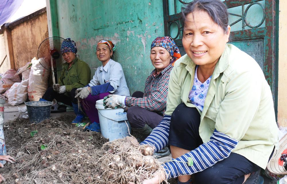 """""""Ngày hội mỗi làng một sản phẩm huyện Lục Nam"""" lần thứ nhất - 2017"""