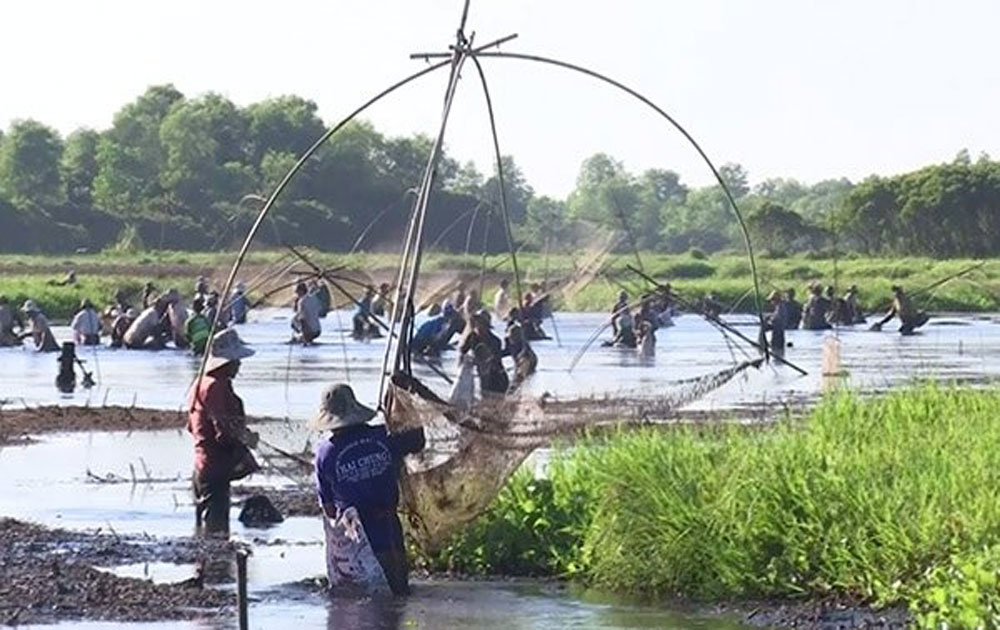 Traditional fishing festival held in Quang Tri
