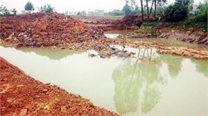 Vi phạm về tài nguyên - môi trường: Nhiều trường hợp chây ỳ nộp phạt