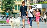 Dắt chó ra đường không rọ mõm có thể bị phạt đến 800 nghìn đồng