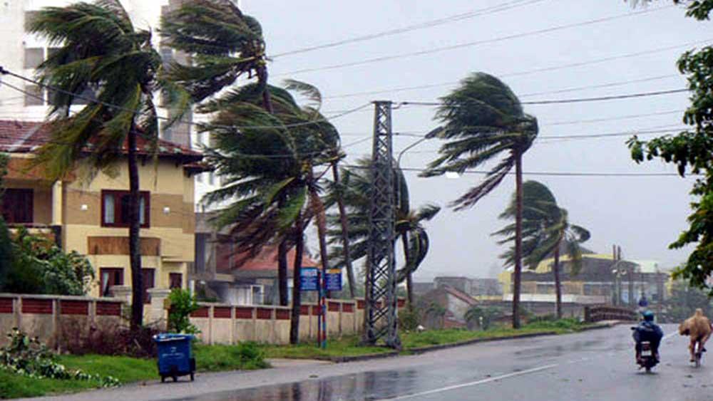 Bắc Giang, chủ động, ứng phó, với bão số 10