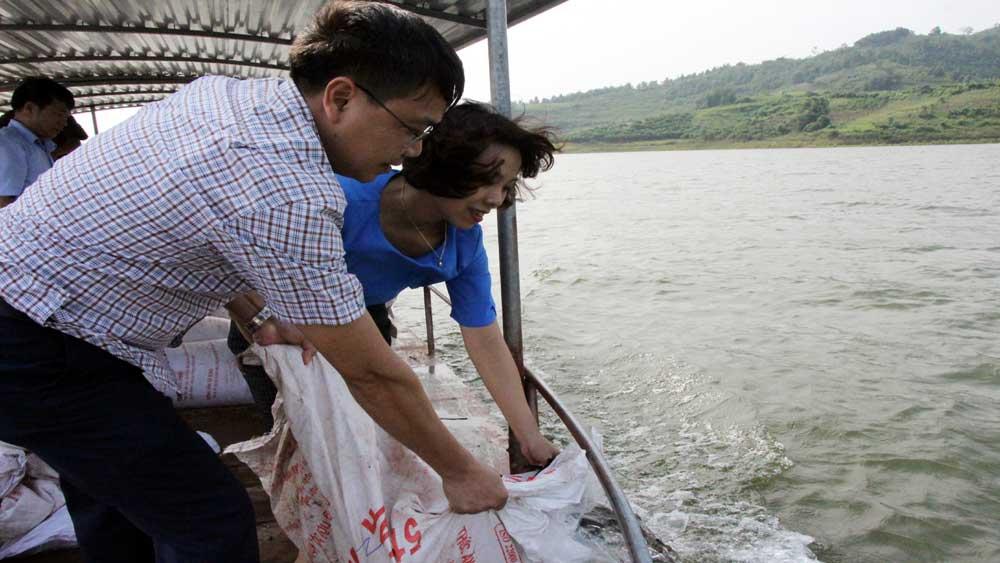 Thả cá công ích hồ Cấm Sơn