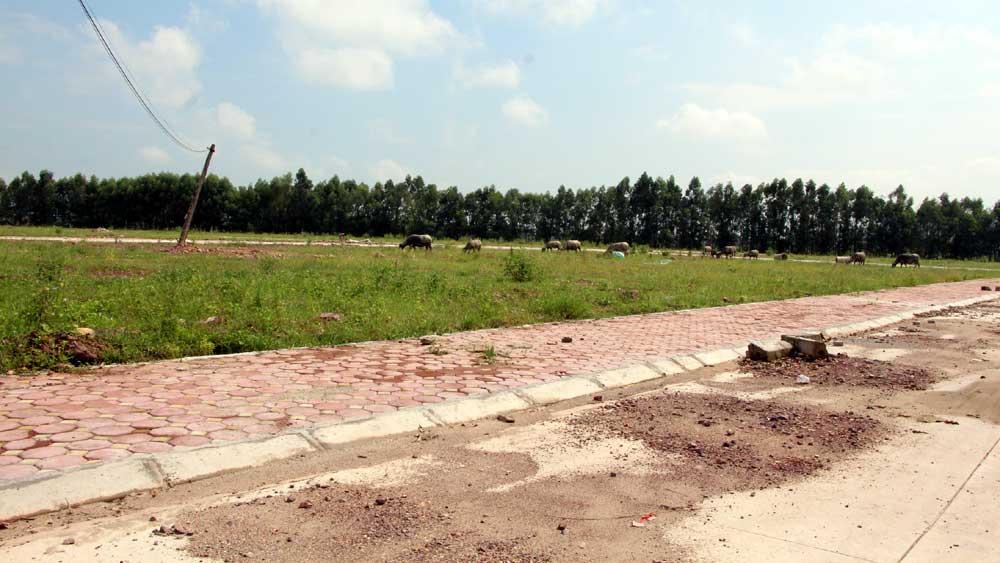 Giải quyết đất ở tại xã Quang Châu (Việt Yên): Cần tuân thủ quy định, bảo đảm đúng đối tượng