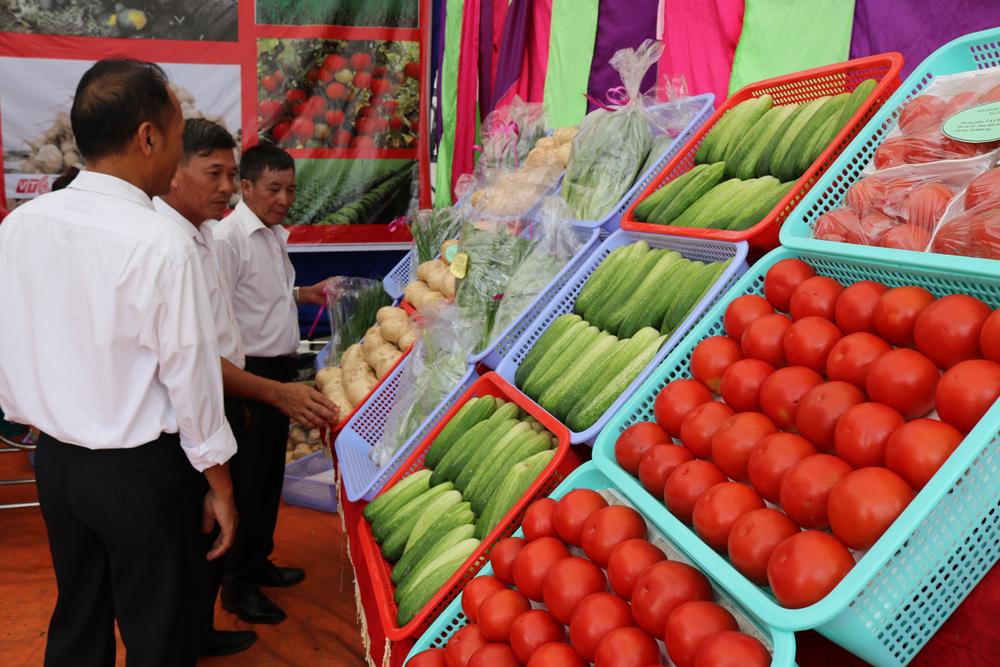 Nhiều sản phẩm nông sản được trưng bày đẹp trong mỗi gian hàng.