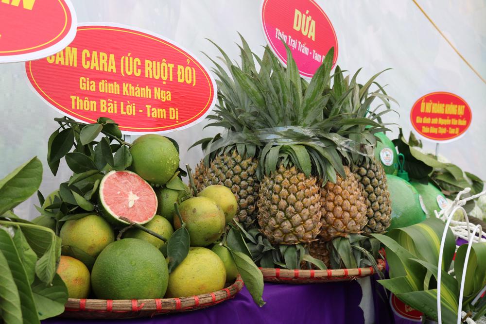 Tại Ngày hội xuất hiện nhiều giống cây ăn quả mới được nông dân Lục Nam đưa vào sản xuất mang lại hiệu quả kinh tế cao.