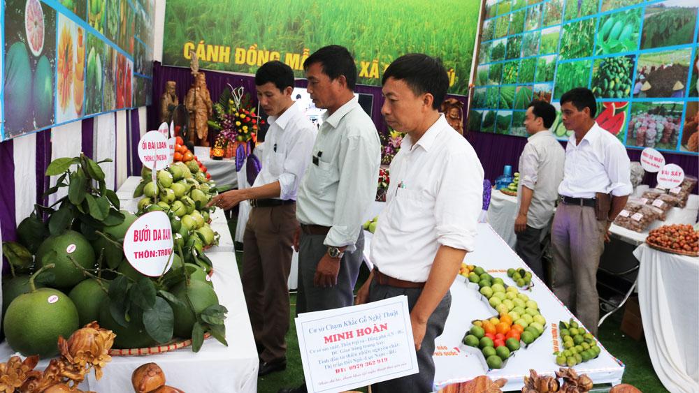 Ngày hội mỗi làng một sản phẩm huyện Lục Nam lần thứ nhất: Thúc đẩy kết nối sản xuất, tiêu thụ