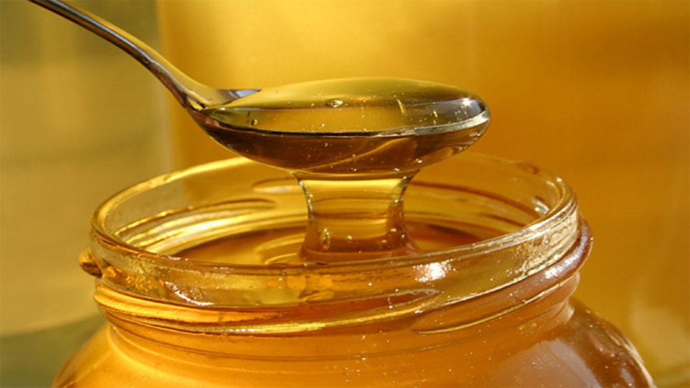 Kinh nghiệm mua mật ong rừng nguyên chất