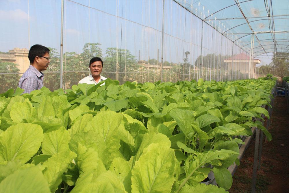 Nan giải xử lý bao bì thuốc bảo vệ thực vật: Kỳ II - Cộng đồng chung tay
