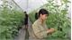 Hướng tới trở thành vùng nông nghiệp công nghệ cao trọng điểm