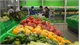 Vegetable, fruit exports estimated at 2.64 billion USD