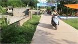 Trưởng thôn Nguyễn Thị Tám: Lo việc nước trước việc nhà