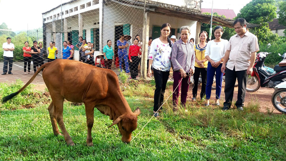 Trao tặng bò cho phụ nữ có hoàn cảnh khó khăn