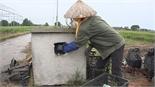 Hiệu quả từ bể thu gom bao bì thuốc bảo vệ thực vật ở Đa Mai