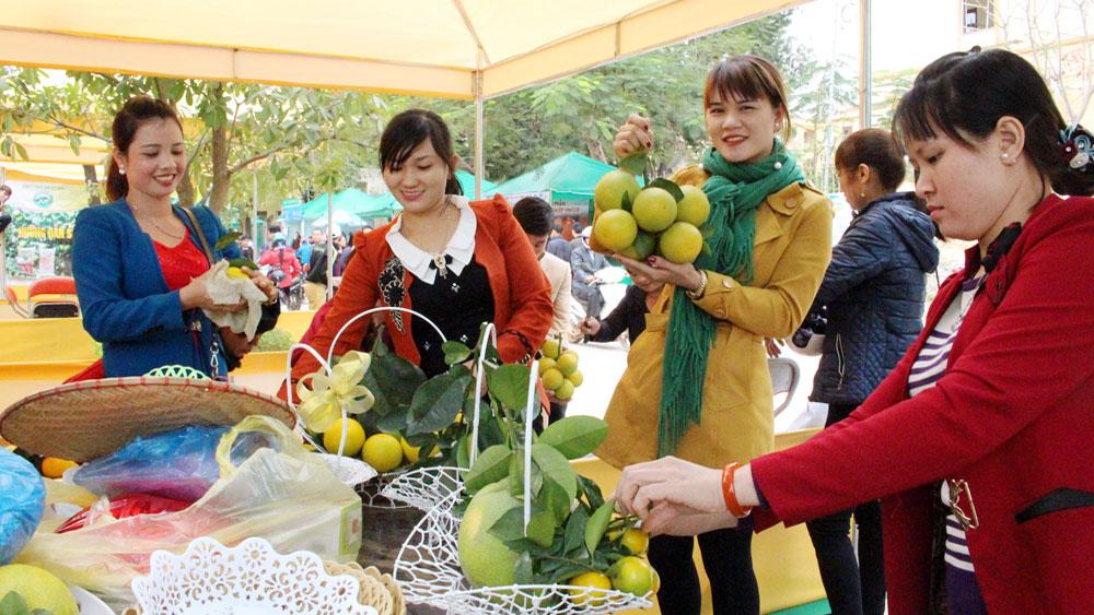 Ngày hội Trái cây huyện Lục Ngạn lần thứ II: Cho quả ngọt vươn xa