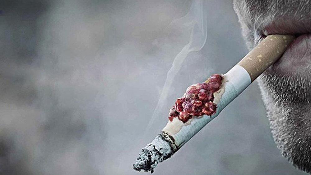 Tỷ lệ hút thuốc lá giảm trong cộng đồng